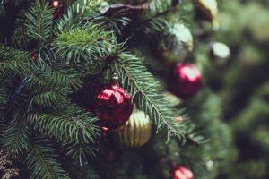 Les sapins Nordmann et la décoration de Noël
